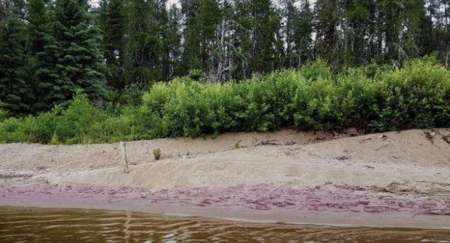 Трудно поверить, что есть фиолетовый песок. Это просто… Это странно, правда