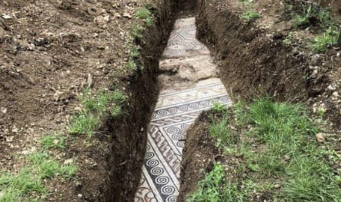 Древний римский мозаичный пол обнаружен под виноградными лозами в Италии