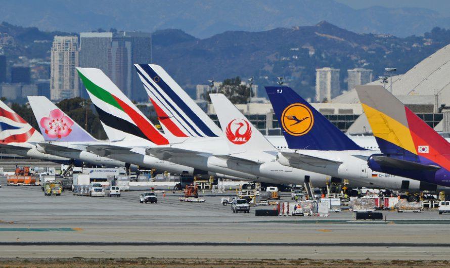 Большинство авиакомпаний в мире обанкротятся к маю