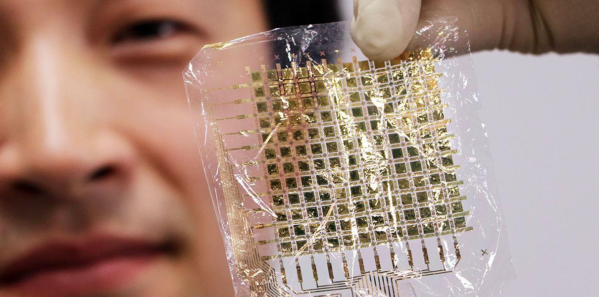 Сверхосязание. Уникальная сенсорная система реагирует в 1000 раз быстрее, чем человеческая кожа